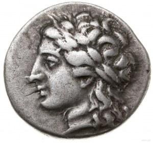 drachma, 260-250 pne; Aw: Głowa Apollina w wieńcu lauro...