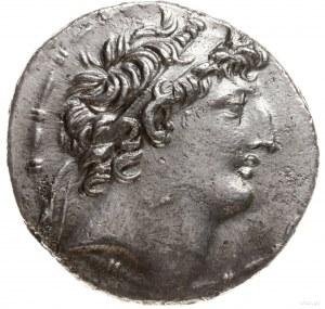 tetradrachma, 121-113 pne, mennica Ptolemais (Ake); Aw:...