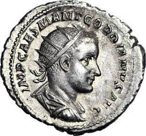 Cesarstwo Rzymskie, Gordian III 238-244 ne, Providentia, Antoninian, rzadszy portret