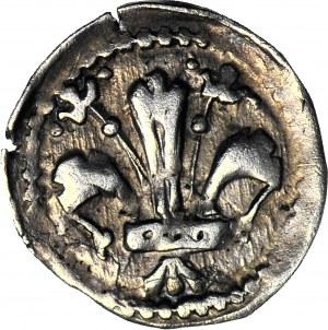 RR-, Ludwik Węgierski (Andegaweński) 1370-1382, Denar Lilia/Tarcza REX, Kopicki R4