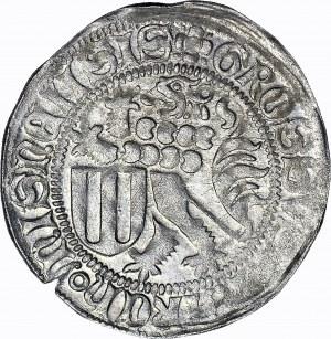 Niemcy, Miśnia, Ernest i Albert, Grosz miśnieński 1464-1465, piękny
