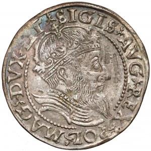Zygmunt II August, Grosz na stopę litewską 1559 - LITVA