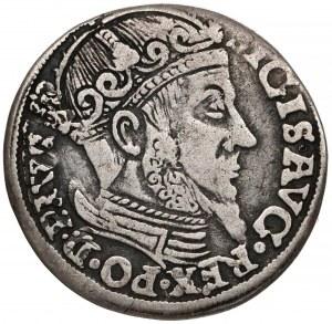Zygmunt II August, Trojak Gdańsk 1557