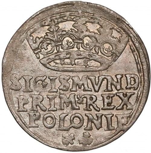 Zygmunt I Stary, Grosz Kraków 1546 - wczesny
