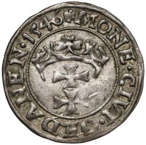 Zygmunt I Stary, Szeląg Gdańsk 1546 - POLON