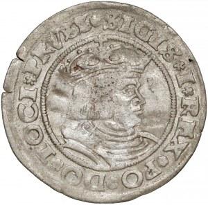 Zygmunt I Stary, Grosz Toruń 1528 - pierwszy