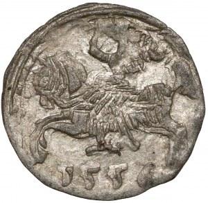 Zygmunt II August, Denar Wilno 1556