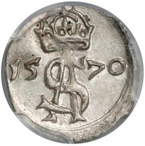 Zygmunt II August, Dwudenar Wilno 1570 - mała korona - piękny