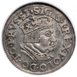 Zygmunt I Stary, Trojak Gdańsk 1537 - wczesny