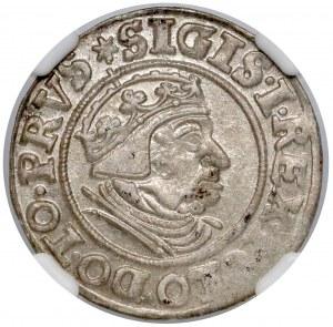 Zygmunt I Stary, Grosz Gdańsk 1539 - PRVS - menniczy