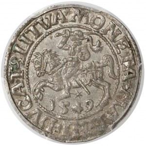 Zygmunt II August, Półgrosz Wilno 1549 - prosta