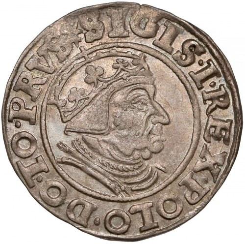 Zygmunt I Stary, Grosz Gdańsk 1539 - PRVS - piękny