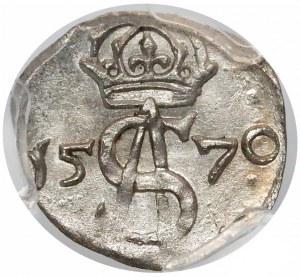 Zygmunt II August, Dwudenar Wilno 1570 - duża korona