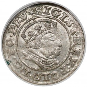 Zygmunt I Stary, Grosz Gdańsk 1540 - PRV