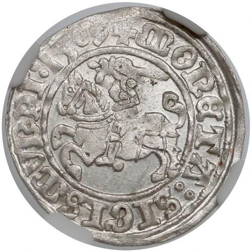 Zygmunt I Stary, Półgrosz Wilno 1509 - piękny