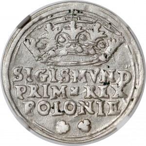 Zygmunt I Stary, Grosz Kraków 1545 - bez ozdobników