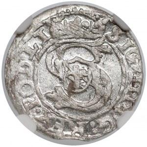Zygmunt III Waza, Szeląg Ryga 1601