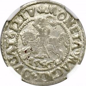 Zygmunt II August, Półgrosz 1546 Wilno - NGC MS62