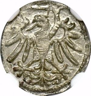 Zygmunt I Stary, Denar 1546 Gdańsk - NGC MS64