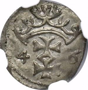 Zygmunt I Stary, Denar 1546 Gdańsk - NGC MS63