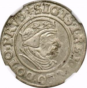 Zygmunt I Stary, Grosz 1539 Gdańsk - NGC MS62