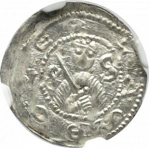 Bolesław IV Kędzierzawy, Denar - NGC MS64