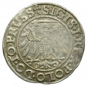 Zygmunt I Stary, Grosz 1540 Elbląg