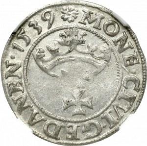 Zygmunt I Stary, Szeląg 1539 Gdańsk - NGC MS61