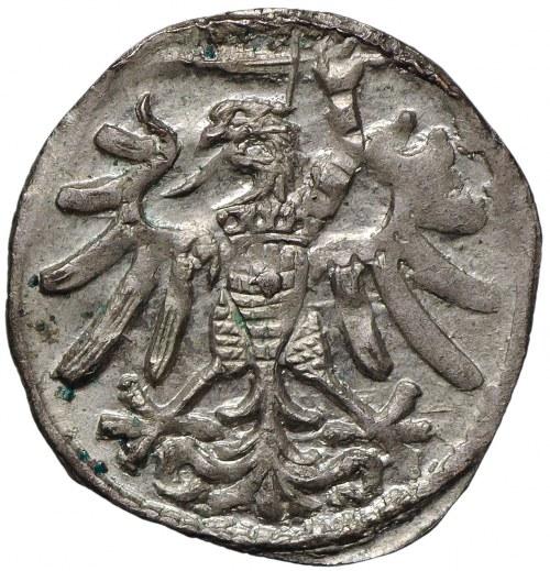 Zygmunt I Stary, denar 1546, Gdańsk, wąskie krzyże w herbie
