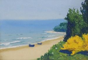 Soter JAXA MAŁACHOWSKI (1867-1952), Nad polskim morzem