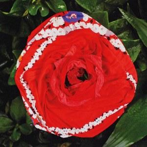 Małgorzata MARKIEWICZ (ur. 1979), Z cyklu: Kwiaty, 2005