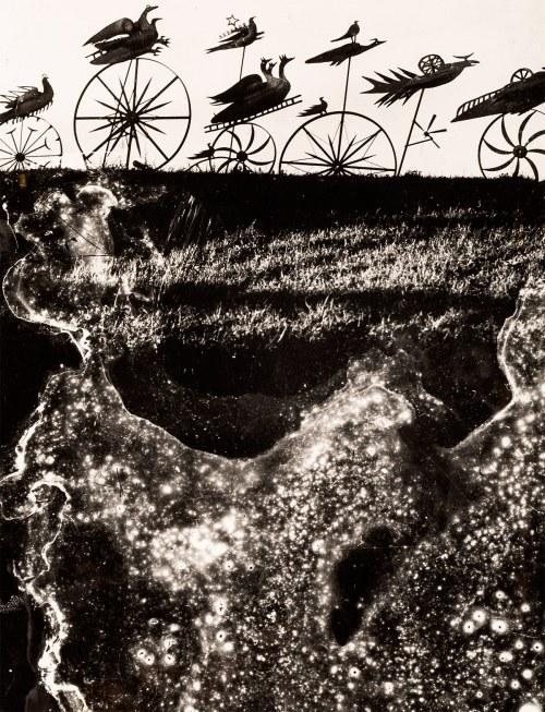 Edward Hartwig (1909-2003), Defilada (rzeźba Hasiora Płonące ptaki w Koszalinie)