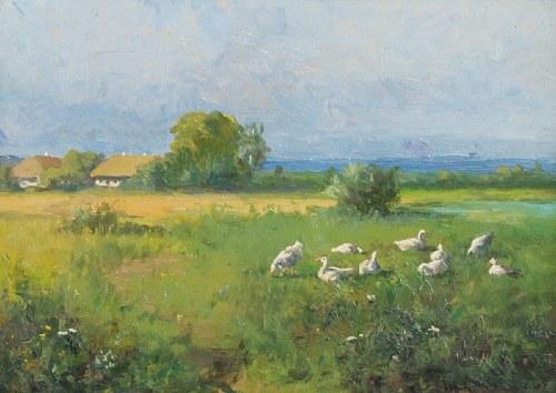 Władysław SZERNER (1836-1915), Gęsi na łące