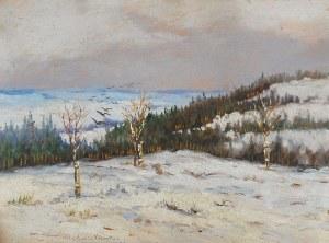 Malarz Nieokreślony, XX w., Pejzaż zimowy