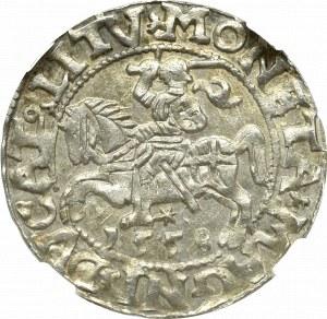 Zygmunt II August, Półgrosz 1558, Wilno - NGC MS63