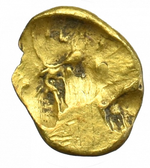 Celtic, Boii, 1/24 stater Muschell