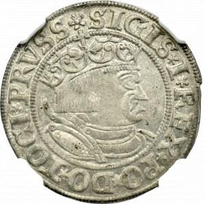 Zygmunt I Stary, Grosz 1533, Toruń - NGC MS62