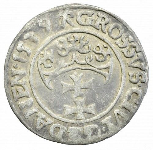 Zygmunt I Stary, Grosz 1539, Gdańsk - PRVS