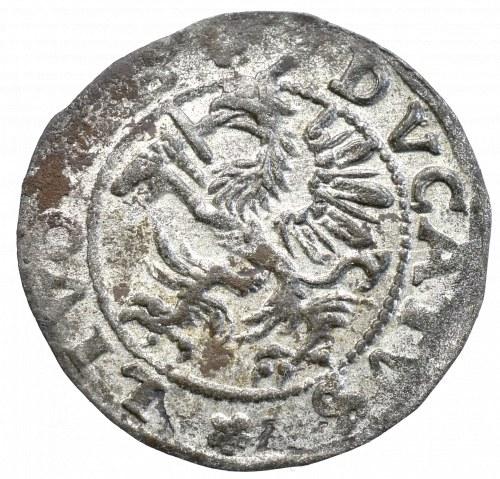 Inflanty, Szeląg Dahlen 1572