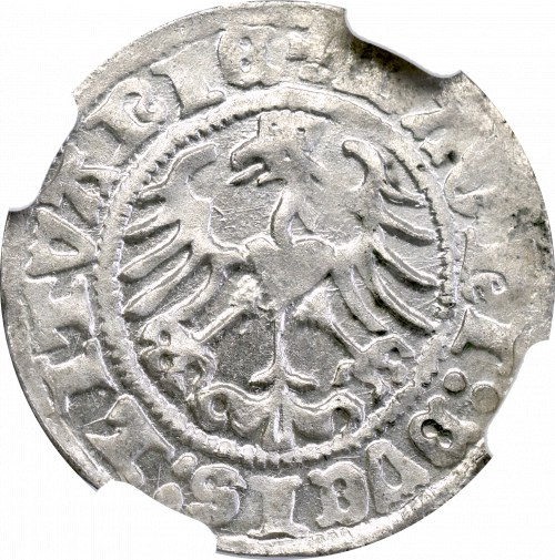 Zygmunt I Stary, Półgrosz 1513, Wilno - NGC MS64