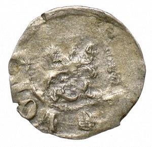 Kazimierz III Wielki, Denar bez daty, Kraków - KAZIMIR orzeł z głową w lewo