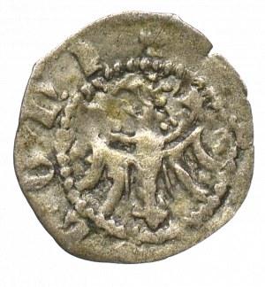 Kazimierz III Wielki, Denar bez daty, Kraków