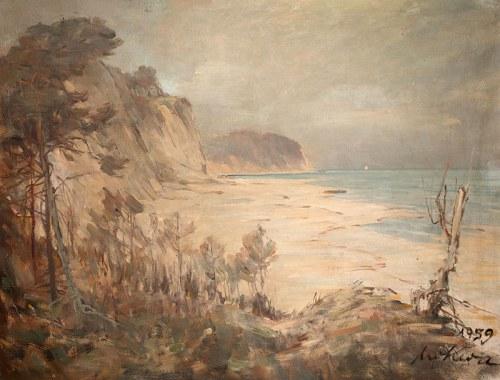 Marian Mokwa (1889 Malary - 1987 Sopot)Widok na klif, 1959 r.