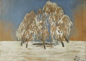 Julian Fałat (1853-1929), Zima w Bystrej