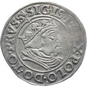 Zygmunt I Stary, grosz 1538, Gdańsk