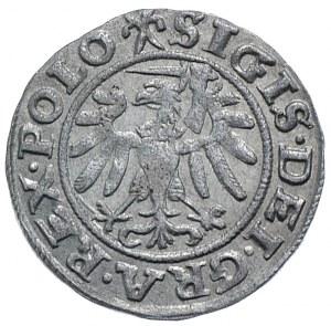 Zygmunt I Stary, szeląg 1539, Gdańsk