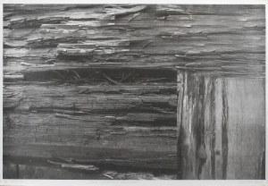 Grzegorz NOWICKI (ur. 1951), Dwie struktury drewniane, 2009