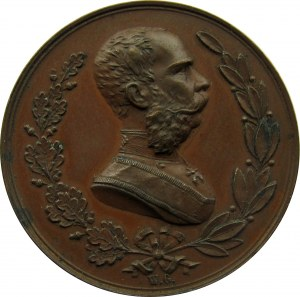 Polska, medal wizyta Franciszka Józefa I w Krakowie 1880, sygnowany W. Głowacki, brąz