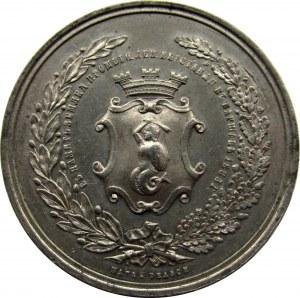 Polska, medal-pamiątka wystawy rolniczo-przemysłowej, Warszawa 1885, syg. F. Witkowski