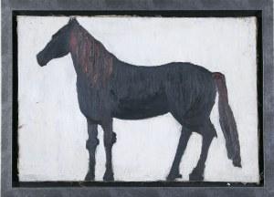 Barbara Jonscher (1926–1986), Czarny koń*